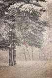 Vintage winter landscape Royalty Free Stock Photos