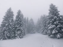 Vintage winter landscape Royalty Free Stock Images