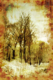 Vintage Winter Trees Stock Images
