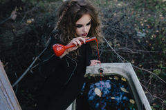 Vintage witch with elixir in hand Stock Image