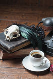 Vintage witchcraft still life. Cat skull, old books, dry rose and crow quill on old wooden desk. Vintage witchcraft still life Stock Photography
