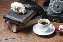 Vintage witchcraft still life. Cat skull, old books, dry rose and crow quill on old wooden desk. Vintage witchcraft still life Royalty Free Stock Photo
