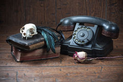 Vintage witchcraft still life. Cat skull, old books, dry rose, old telephone and crow quill on old wooden desk. Vintage witchcraft still life Stock Photography