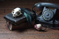 Vintage witchcraft still life. Cat skull, old books, dry rose, old telephone and crow quill on old wooden desk. Vintage witchcraft still life stock image