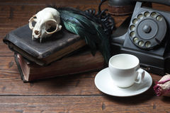 Vintage witchcraft still life. Cat skull, old books, dry rose, white cup and crow quill on old wooden desk. Vintage witchcraft still life Royalty Free Stock Images