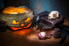 Vintage witchcraft still life. Royalty Free Stock Images