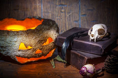 Vintage witchcraft still life. Dry pumpkin, cat skull on old books, dry rose, crow quill on blue old wooden background. Vintage witchcraft still life stock photography