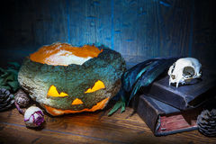 Vintage witchcraft still life. Dry pumpkin, cat skull on old books, dry rose, crow quill on blue old wooden background. Vintage witchcraft still life Stock Image