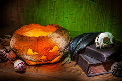 Vintage witchcraft still life. Dry pumpkin, cat skull on old books, dry rose, crow quill on green old wooden background. Vintage witchcraft still life Stock Photography