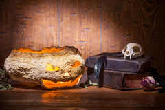 Vintage witchcraft still life. Royalty Free Stock Photos