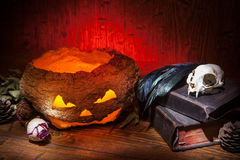 Vintage witchcraft still life. Dry pumpkin, cat skull on old books, dry rose, crow quill on red old wooden background. Vintage witchcraft still life Stock Photography