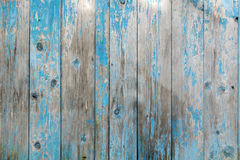 Vintage wood background with blue color peeling paint. Royalty Free Stock Photography