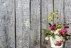 Vintage Wood Background with Flowers Shabby Chic. Vintage Painted Wood background with flowers in a vintage pot in corner, Shabby Chic royalty free stock photos