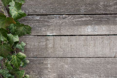 Vintage wood background texture from old wooden planks Royalty Free Stock Image