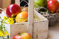 Vintage wood box in Provence style with red yellow apples, pears on straw, basket with fruits Royalty Free Stock Images