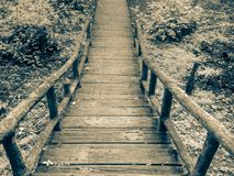 Vintage of Wood bridge in Forest royalty free stock photography