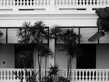 Vintage wood door & balcony of classic building. Vintage wood door & balcony of classic retro building. black & white Stock Photos