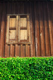 Vintage wood house with green leaf fence Stock Photography