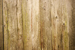 Vintage wood texture Royalty Free Stock Images