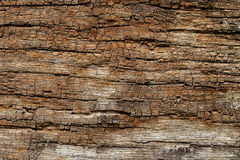 Vintage Wood Texture, Abstract Background, Grunge Royalty Free Stock Photos