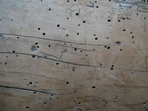 Vintage wood texture with holes stock photography