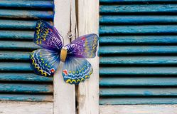 Vintage wood window. Background texture using vintage wood window and butterfly royalty free stock image