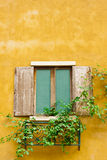 Vintage wood window Stock Images