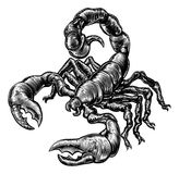 Vintage woodblock style scorpion stock illustration
