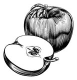 Vintage Woodcut Apples. An original illustration of a whole apple and sliced apple fruit in a vintage woodcut or woodblock style Royalty Free Stock Photography