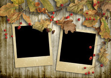 Vintage wooden background with autumn leaves and frames Royalty Free Stock Photos