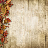 Vintage wooden background with autumn rowan and leaves Stock Photography