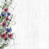Field flowers on white wooden vintage background with lace. Vintage wooden background with beautiful wildflowers and place for photo and text Stock Images