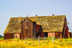 Vintage Wooden Barn With See Through Roof Stock Image