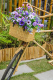 Vintage wooden bicycle with flowers Royalty Free Stock Photo