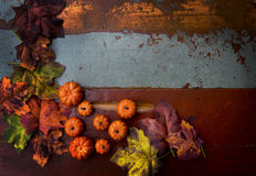 Vintage wooden board with pumpkins and leaves Royalty Free Stock Images