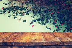 Vintage wooden board table in front of climbing plant against the wall.  Royalty Free Stock Photo