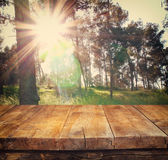 Vintage wooden board table in front of dreamy forest landscape with lens flare. Royalty Free Stock Image