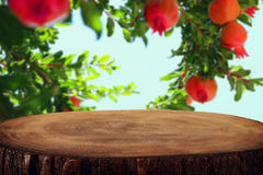 Vintage wooden board table in front of dreamy pomegranate tree. Vintage wooden board table in front of dreamy pomegranate tree Stock Photo