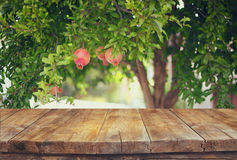 Vintage Wooden Board Table In Front Of Dreamy Pomegranate Tree Landscape. Retro Filtered Image Stock Photography