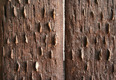 Vintage wooden boards wall Stock Photography