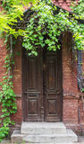 Vintage wooden door frame with vines and tree shade cover Royalty Free Stock Images