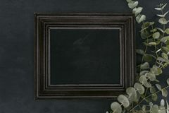 Vintage wooden frame with eucalyptus branches over black background Royalty Free Stock Photo