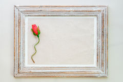 Vintage wooden frame with rose for Valentine's day background. Royalty Free Stock Image