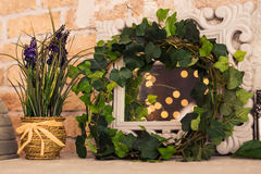 Vintage wooden rectangular white frame with green plant. Floral scene. Royalty Free Stock Images