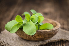 Vintage wooden table with Stevia leaves Stock Images