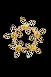 Vintage yellow flower brooch Stock Photos