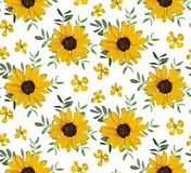 Vintage Yellow Sunflower tiny beautiful soft flowers, leaves bac Stock Photography
