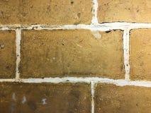 Vintaged ściana z cegieł Fotografia Royalty Free