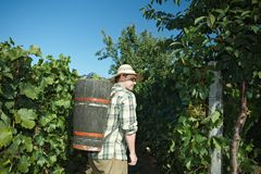 Vintager wearing butt full of grapes Stock Photos