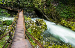 Vintar gorge near Bled Royalty Free Stock Image